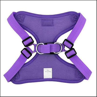 No Choke Easy Fit Dog Harness – Vibrant Colours - pooche supplies