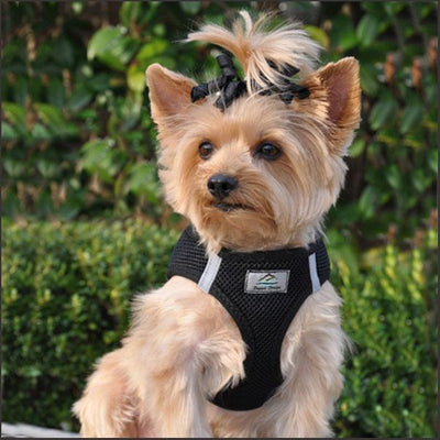 Soft Dog Harness - Step In - Choke Free - Reflective - pooche supplies