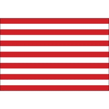Load image into Gallery viewer, 3x5 Sons of Liberty Historical Nylon Flag