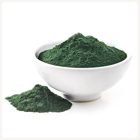 Chlorella Chile