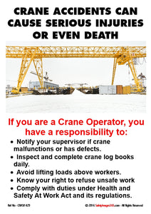 Overhead Crane image with the crane drivers responsibilities listed.