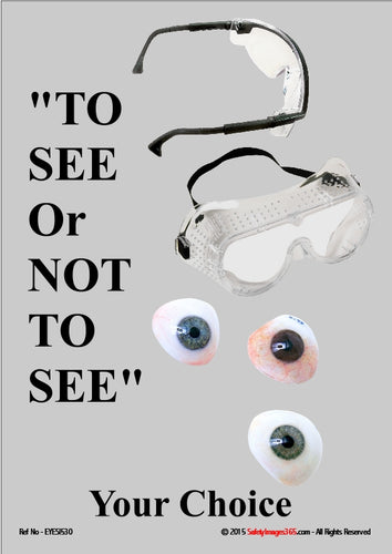 Images of safety goggles and the human eye.
