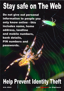 Picture of a spider with prey caught in a cobweb with guidance for staying safe when using the internet.