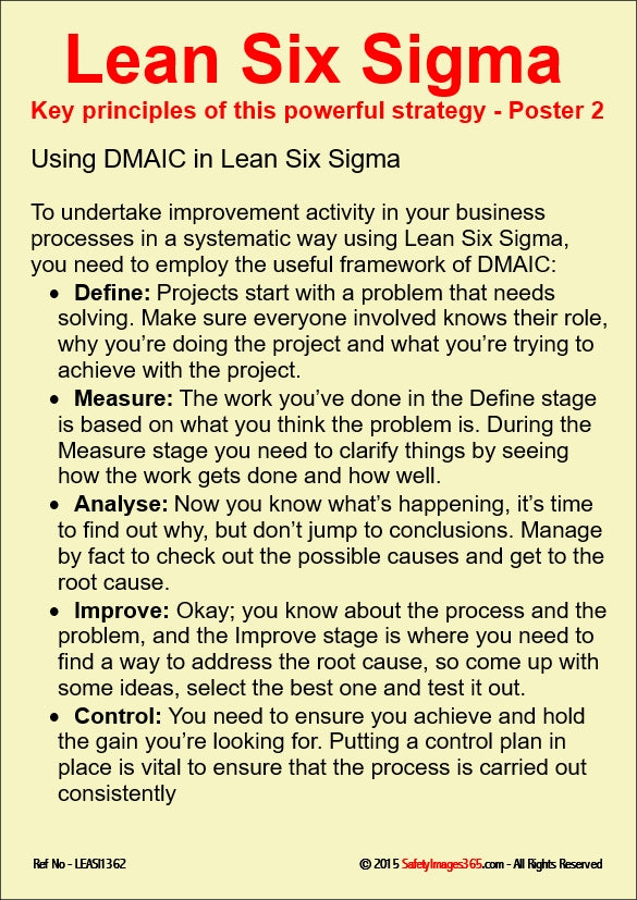 Text only stating principles associated with elements of Lean Six Sigma.