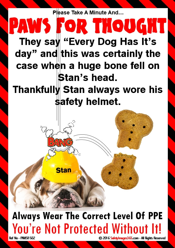 Image of a dog wearing a safety helmet with a giant sized bone.