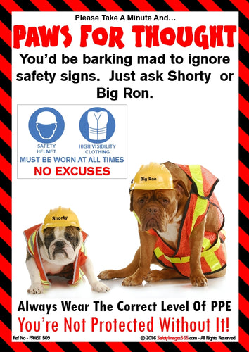 A picture of two dogs wearing safety helmets and high visibility clothing.