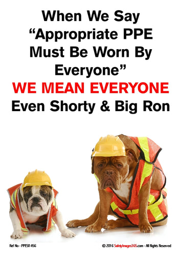 Picture of two dogs both wearing hard hats and high visibility jackets.