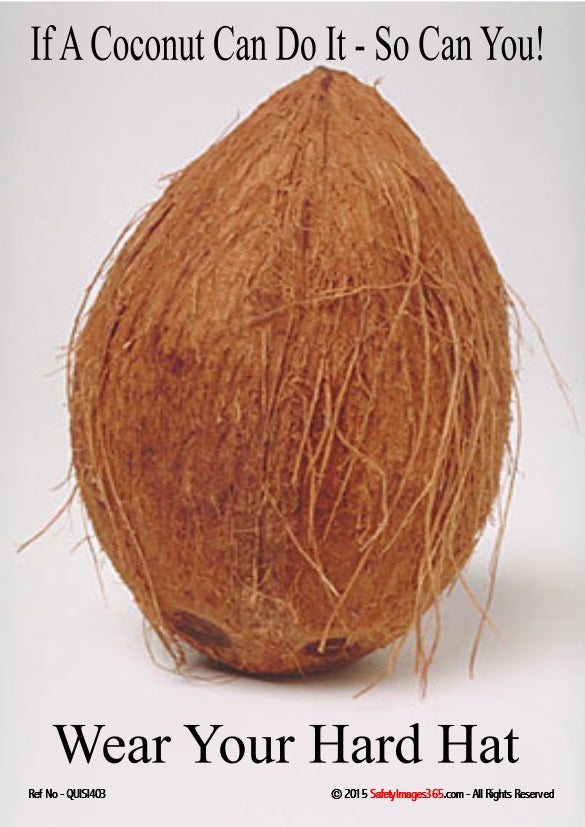 Picture of a coconut and the caption - if a coconut can do it, so can you - wear your hard hat.