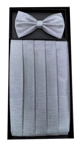 Men's Metallic Silver Cummerbund & Bowtie Set