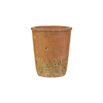 Mossy Terra Cotta Pot Vase-Seasonal-Medium-A Cottage in the City