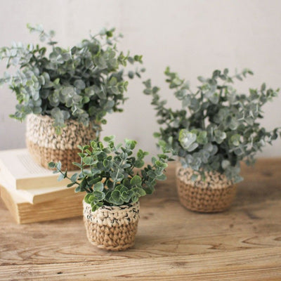 Artificial Eucalyptus Plant in Woven Pot
