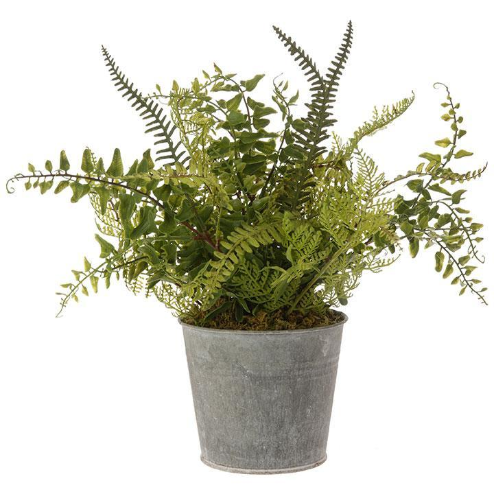Potted Fern-Decor-Raz-A Cottage in the City