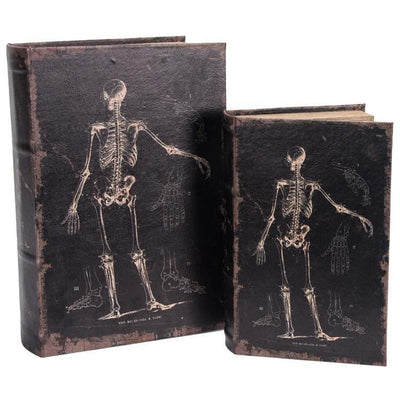 Skeleton Book Box