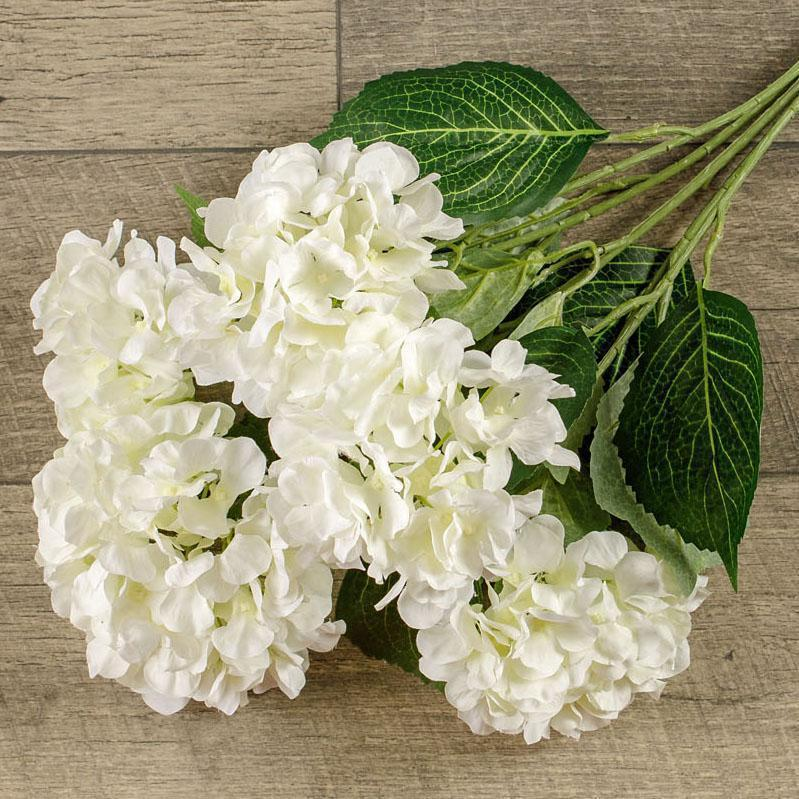 White Hydrangea Bush-Seasonal-Ragon House-A Cottage in the City