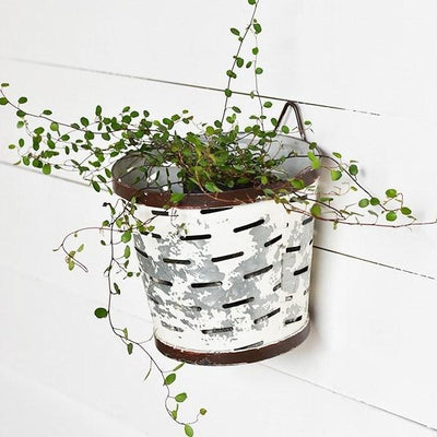 White Metal Olive Bucket