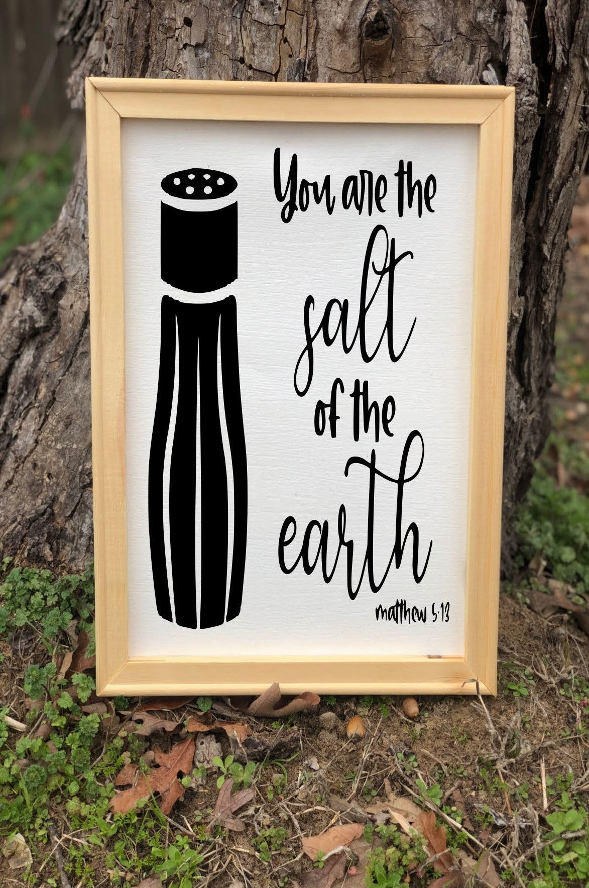 You are the salt of the earth/Matthew 5:13/Bible scripture/Jesus/Lord/Faith/Believe