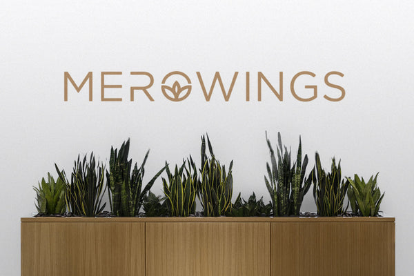 MeroWings under a new guise: Learn more about the rebranding of MeroWings