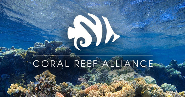 Coral reef protection: MeroWings joins forces with the Coral Reef Alliance