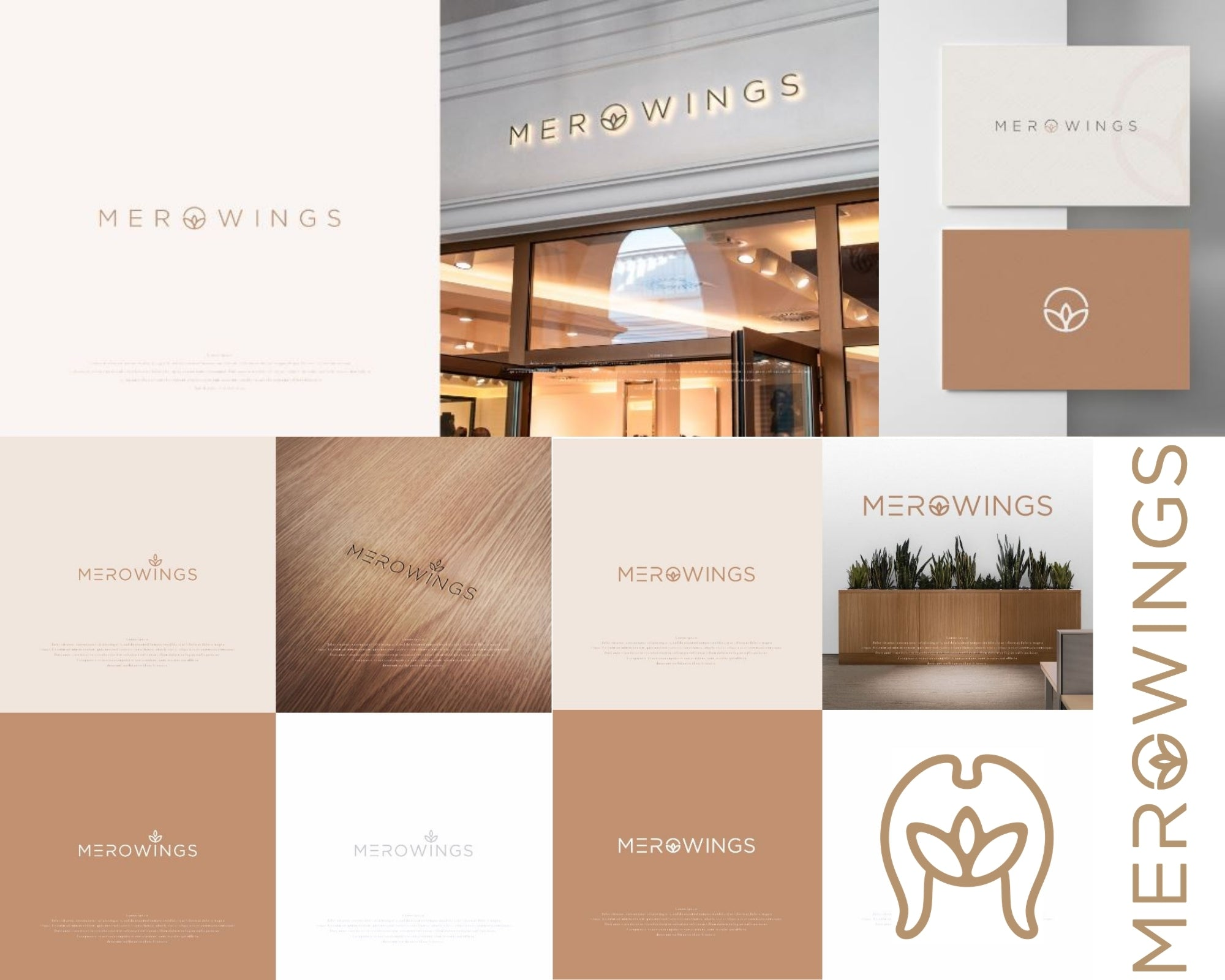 The evolution of the MeroWings logo