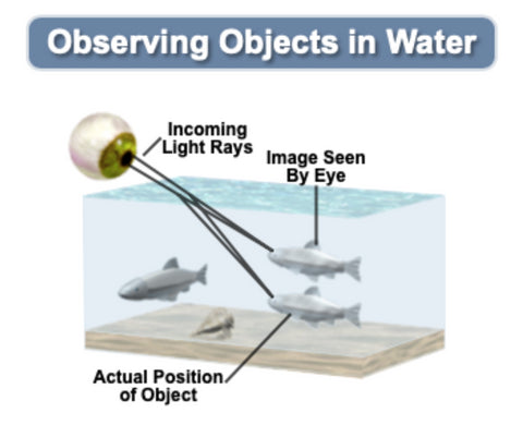 Observing Objects in Water