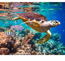 Load image into Gallery viewer, Turtle in the ocean