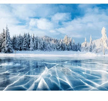 Load image into Gallery viewer, Frozen forest - Just Paint By Numbers