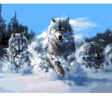 Load image into Gallery viewer, Wolves