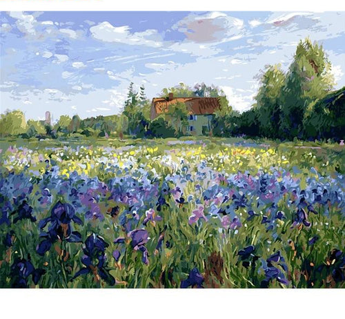 Flowers in Field - Just Paint By Numbers
