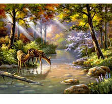 Load image into Gallery viewer, River in the forest - Just Paint By Numbers