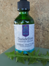 Load image into Gallery viewer, Dandelion Herbal Tincture