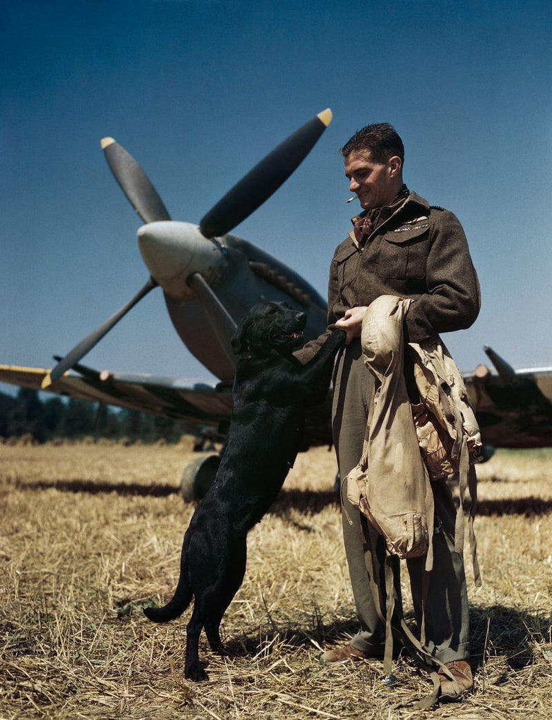 Johnnie Johnson - Top Scoring RAF Fighter Ace World War 2