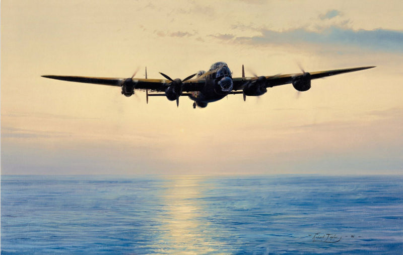 Coast In Sight by Robert Taylor - Aviation Art