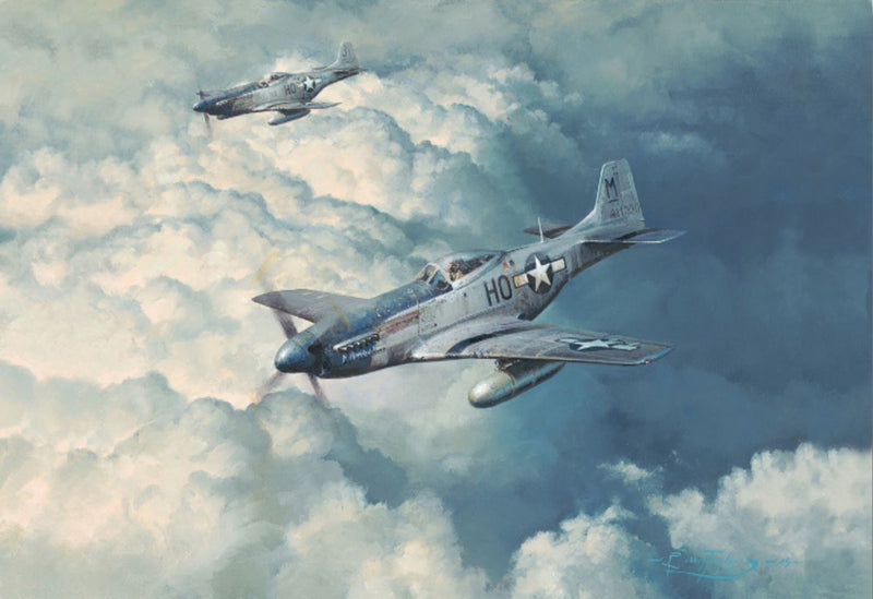 Looking For Trouble - Aviation Art of P-51 by Robert Taylor