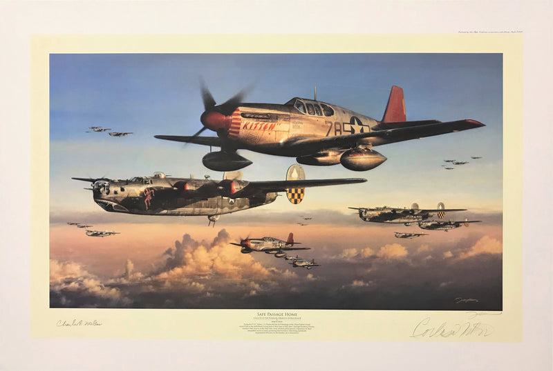 Safe Passage Home Print - Aviation Art by John Shaw