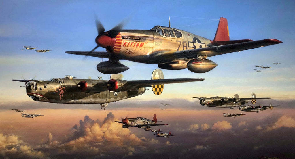 Safe Passage Home - Aviation Art by John Shaw