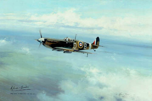 Bader Legend by Robert Taylor - Aviation Art