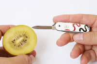 PAPERSKY Small Pocket Knife