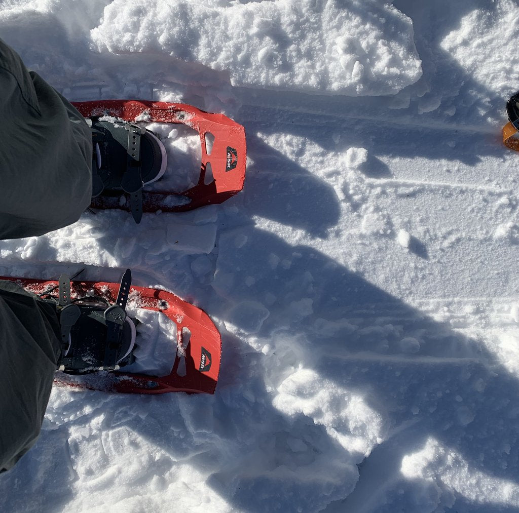 Which snowshoe is right for you?