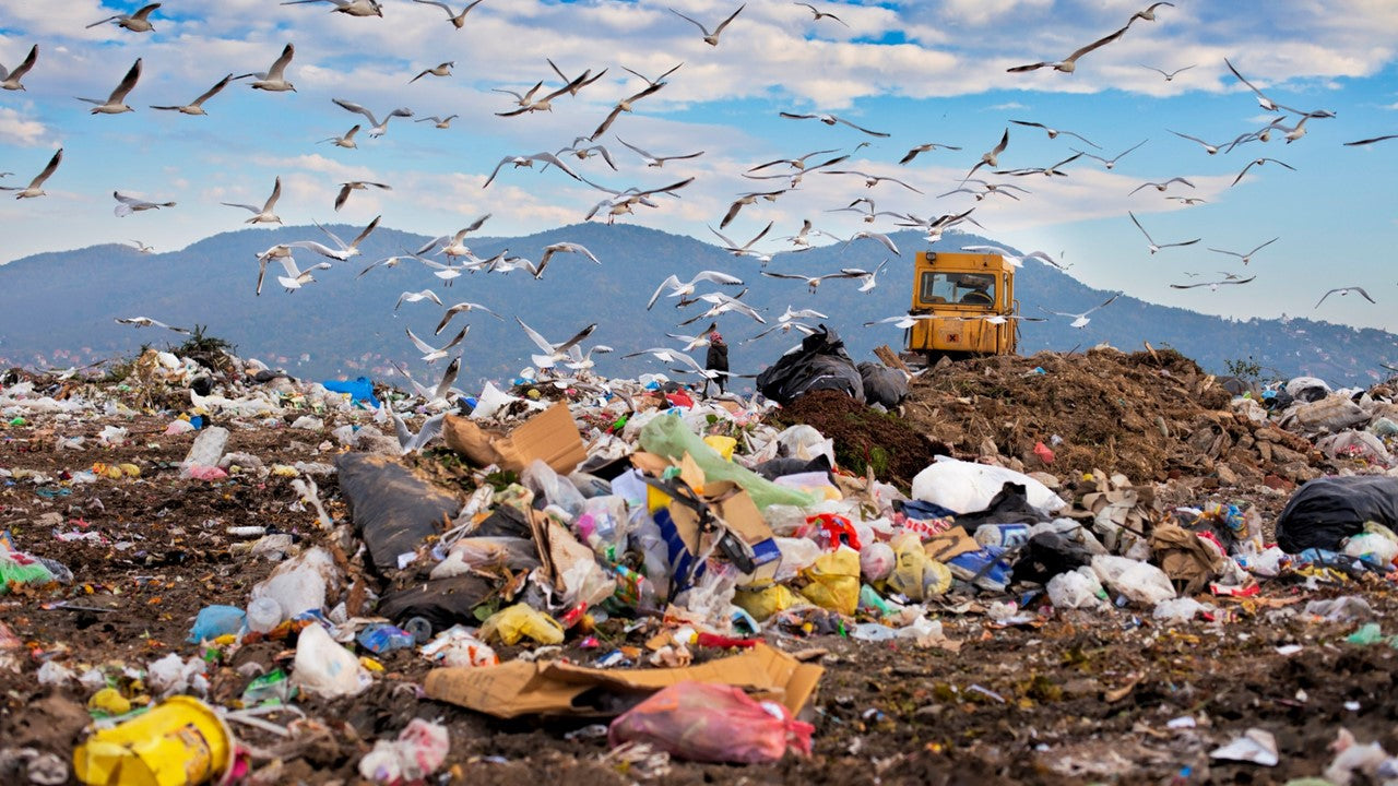 Three Ways to Reduce Massive Landfill Waste