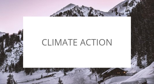 What is the international day of climate action about?