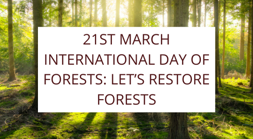 21st March International day of forests: Let's restore forests!