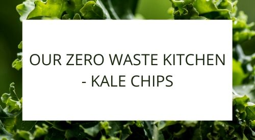 Our zero-waste kitchen - Kale chips