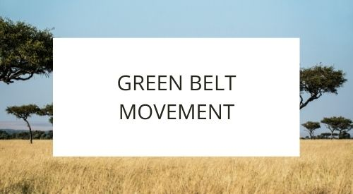 Do you know what the green belt movement is?