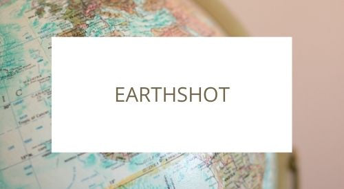 Have you heard of Earthshot?