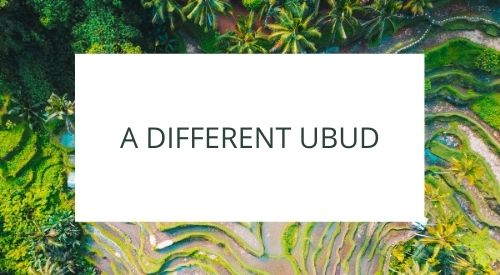 Discovering a different side to Ubud