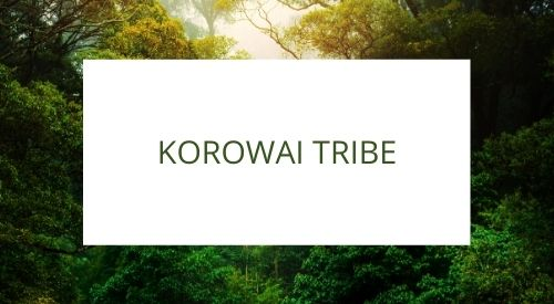Introducing the Korowai tribe from the province of Papua, Indonesia.