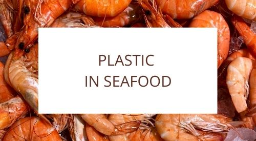 Seafood Study Finds Plastic in 100% of Samples