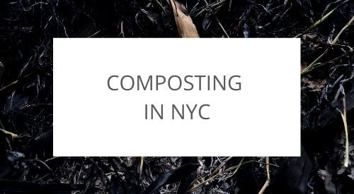 Starting a private composting business in NYC