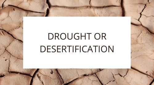 What is the difference between drought or desertification?