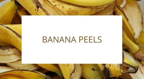 How to avoid food waste in the kitchen: repurposing banana peels